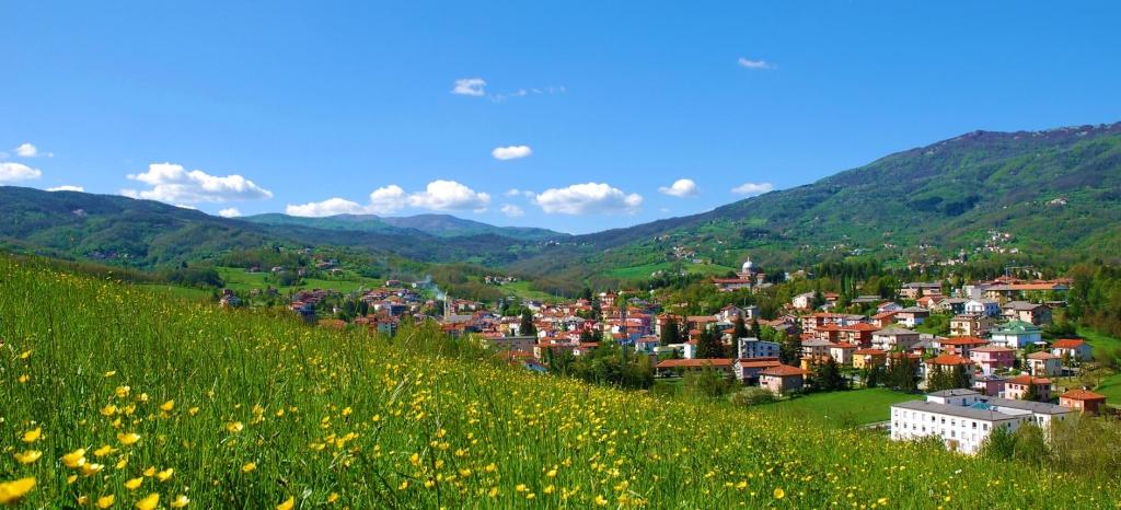 Il paese di Bedonia, in una conca della valle del Taro