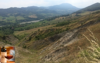 Vista verso l'inizio dell'alta Valceno