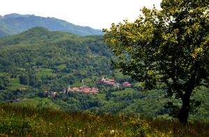 Il paese di Caneso, visto dal Monte Segalino