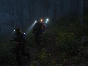 Camminata notturna con le torce frontali