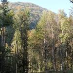 Parco di Monte Moria