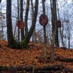 Il bosco degli artisti sculture in legno