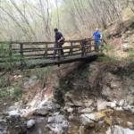 Ponte in Legno sul Rio Golotta