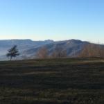 Vista sul grupp del M.Menegosa dalla cima del Dosso