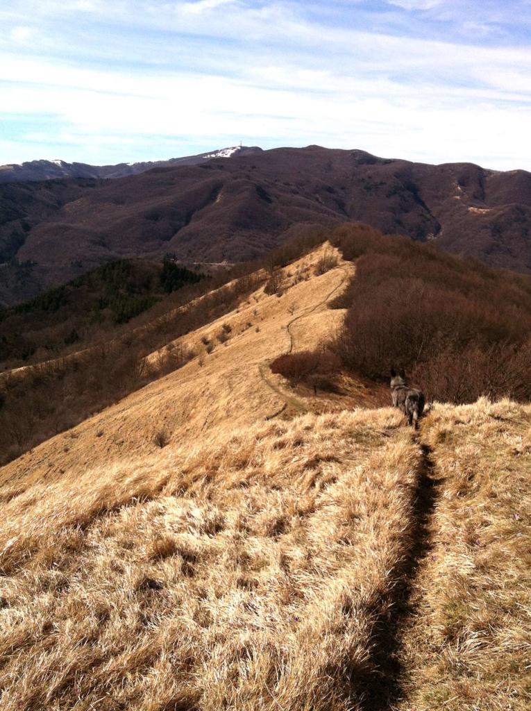 sentiero sul crinale