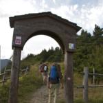 porta Via Francigena