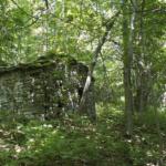 le case nascoste nel bosco