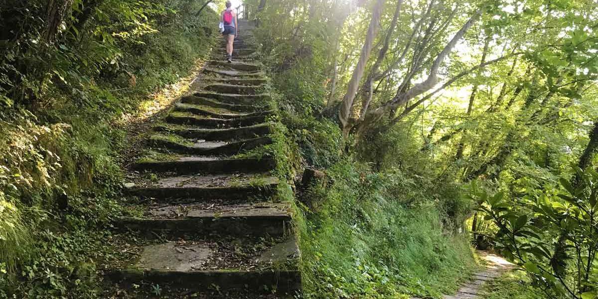 Sentiero tra i castagni con enormi lastre in pietra