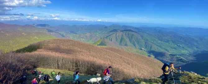 Il crinale del Monte Gottero